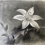 Certificate_in_Charcoal_and_Soft Pastels